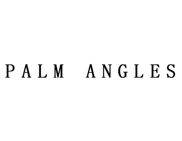 PALM ANGLES